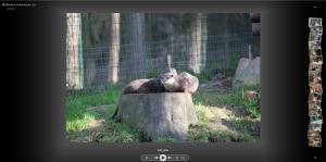 Bilderanzeige Remotezugriffwebseite WHS 2011