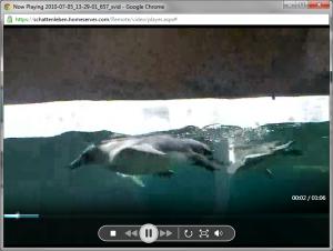 Videoanzeige Remotezugriffwebseite WHS 2011